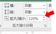 PageSetUp.Zoomを使って印刷範囲を120%に拡大した場合